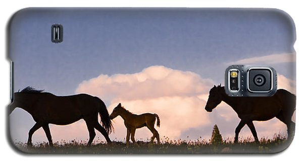 Wild Horses And Clouds Galaxy S5 Case