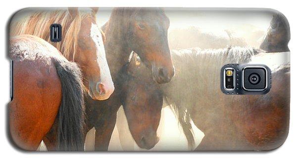 Wild Horses - Australian Brumbies 2 Galaxy S5 Case