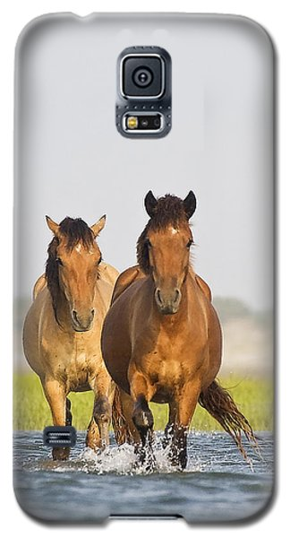 Wild Horses Galaxy S5 Case by Bob Decker
