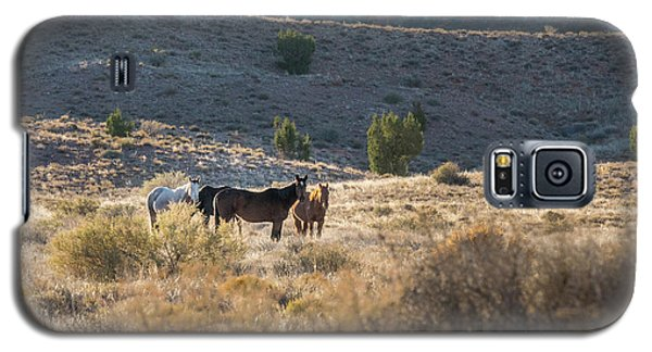 Galaxy S5 Case featuring the photograph Wild Horses In Monument Valley by Jon Glaser