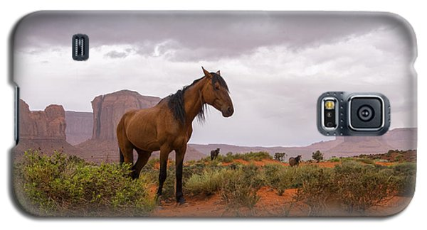 Wild Horses Of Monument Valley Galaxy S5 Case