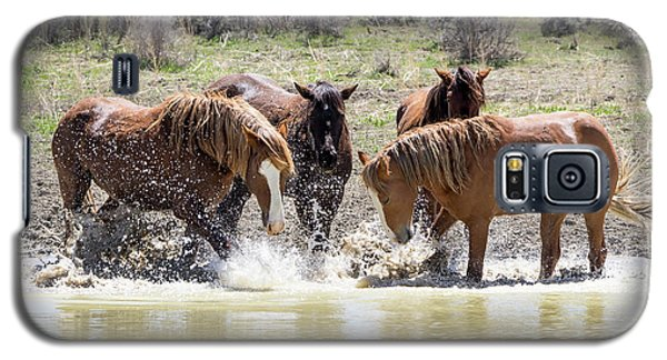 Wild Mustang Stallions Playing In The Water - Sand Wash Basin Galaxy S5 Case