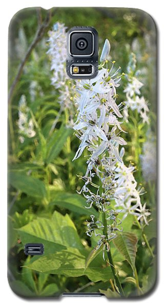 Galaxy S5 Case featuring the photograph Wild Hyacinth by Scott Kingery