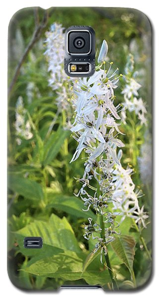Wild Hyacinth Galaxy S5 Case