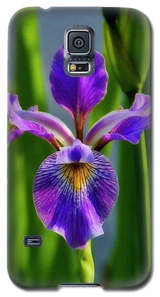 Wild Iris In Flight Galaxy S5 Case