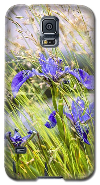 Wild Irises Galaxy S5 Case by Marty Saccone