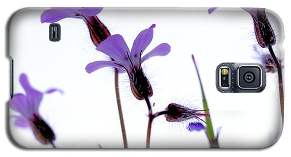 Wild Knotted Cranesbill Galaxy S5 Case