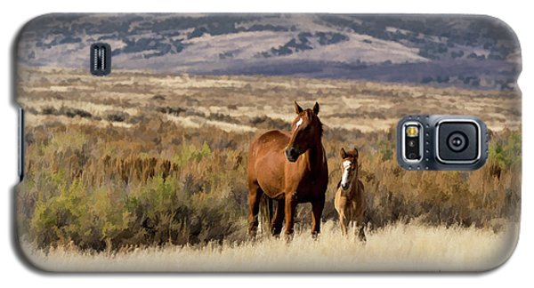 Wild Mare With Young Foal In Sand Wash Basin Galaxy S5 Case