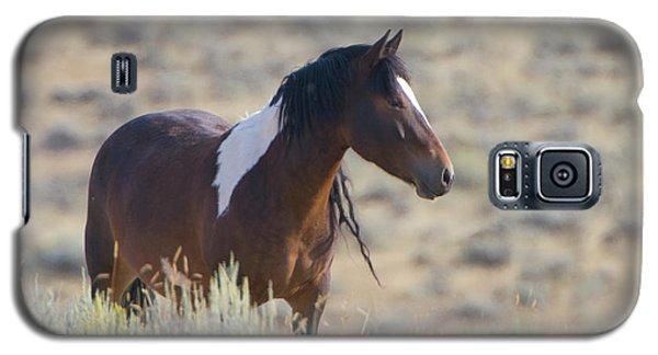 Wild Mustang 1 Galaxy S5 Case