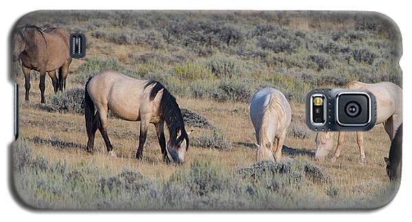 Wild Mustang 11 Galaxy S5 Case