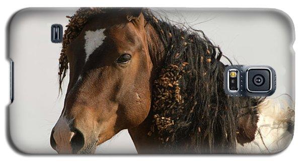 Wild Mustang 12 Galaxy S5 Case
