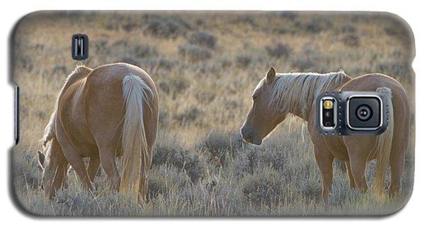 Wild Mustang 3 Galaxy S5 Case