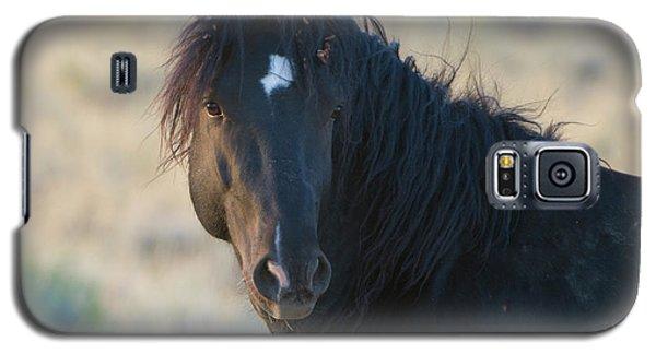 Wild Mustang 4 Galaxy S5 Case