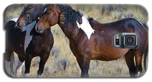 Wild Mustang 5 Galaxy S5 Case