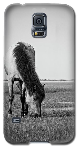 Wild Mustang Galaxy S5 Case by Bob Decker