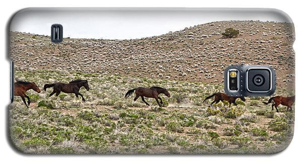 Wild Mustang Herd Running Galaxy S5 Case