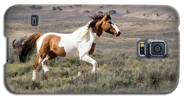 Wild Mustang Stallion On The Move In Sand Wash Basin Galaxy S5 Case