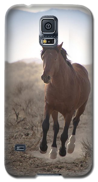 Wild Mustang Stallion Running Galaxy S5 Case