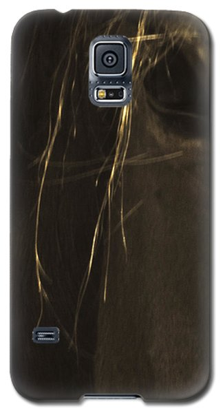Wild Mustangs Of New Mexico 43 Galaxy S5 Case