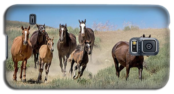 wild mustangs on the run to the water hole in Sand Wash Basin Galaxy S5 Case