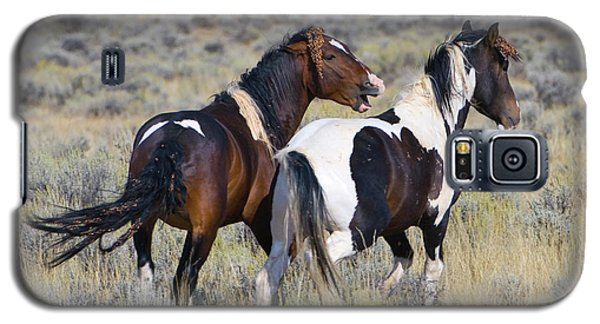 Wild Mustangs Playing Galaxy S5 Case