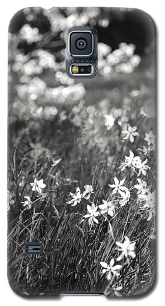 Galaxy S5 Case featuring the photograph Wild Narcissus At The Forest's Edge by Colleen Williams