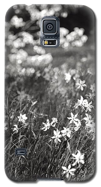 Wild Narcissus At The Forest's Edge Galaxy S5 Case by Colleen Williams