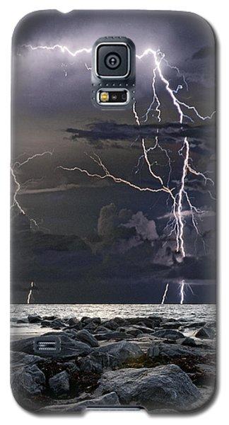 Wild Night Galaxy S5 Case