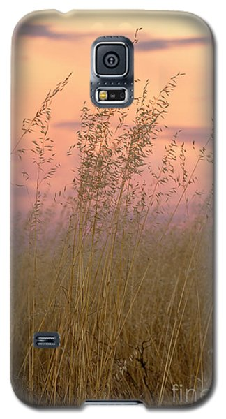 Galaxy S5 Case featuring the photograph Wild Oats by Linda Lees