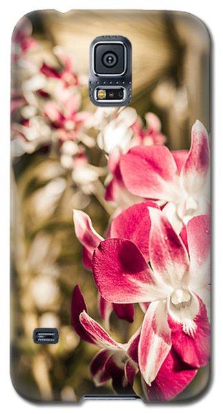Wild Orchids Galaxy S5 Case