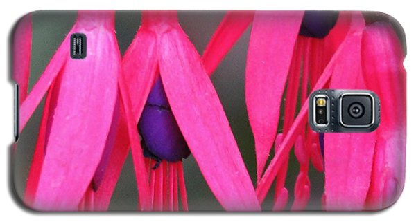 Wild Oregon Fuchsia  Galaxy S5 Case by Michele Penner