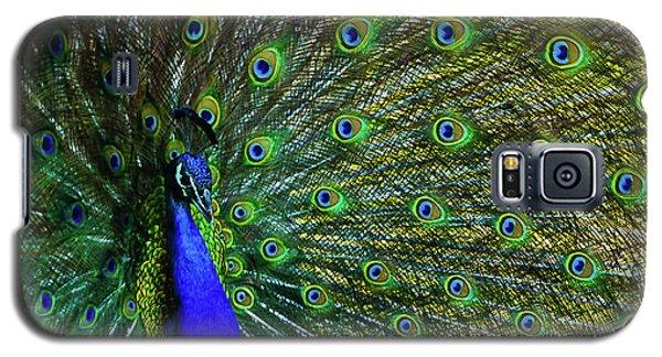 Wild Peacock Galaxy S5 Case