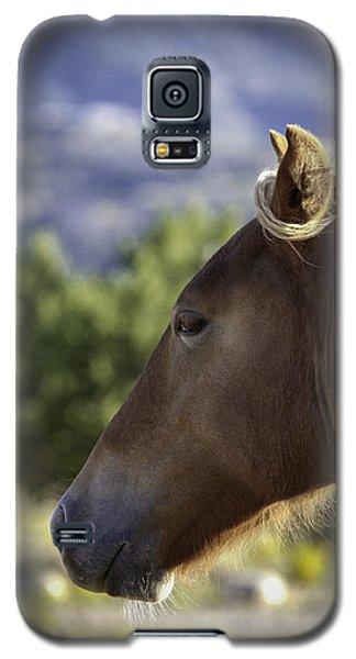 Wild Profile Galaxy S5 Case by Elizabeth Eldridge