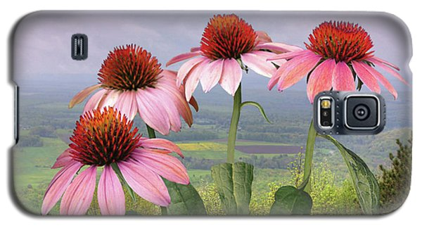 Wild Purple Coneflowers Galaxy S5 Case