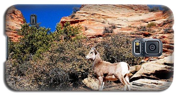 Wild Ram At Zion Galaxy S5 Case