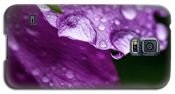 Galaxy S5 Case featuring the photograph Wild Rose Droplet by Darcy Michaelchuk