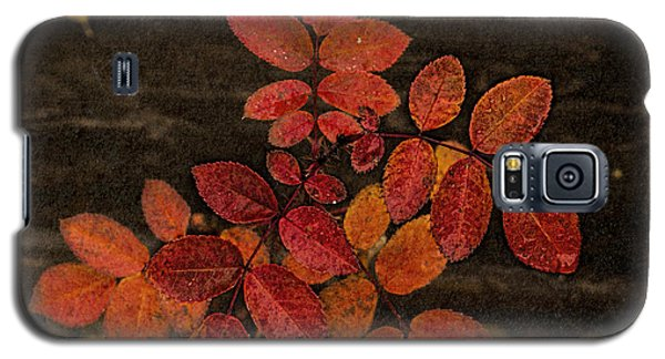 Wild Rose Leaves Galaxy S5 Case