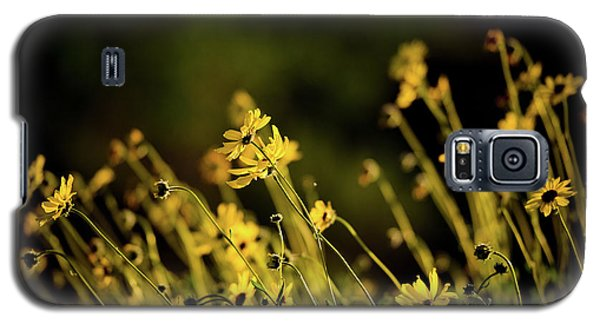 Galaxy S5 Case featuring the photograph Wild Spring Flowers by Kelly Wade