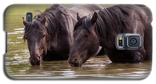 Wild Stallions At The Water Hole Galaxy S5 Case