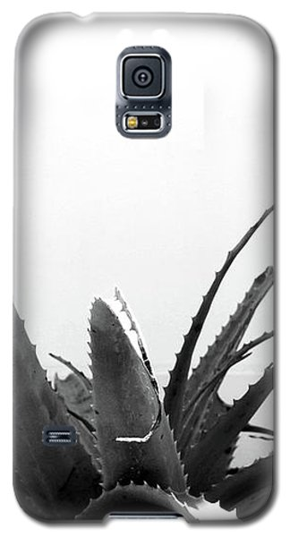 Wild Succulent-  By Linda Woods Galaxy S5 Case by Linda Woods
