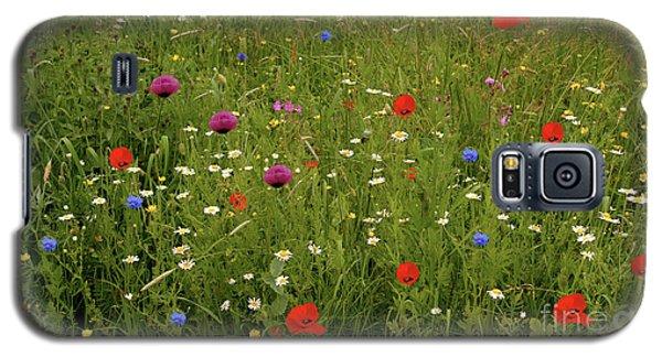 Wild Summer Meadow Galaxy S5 Case