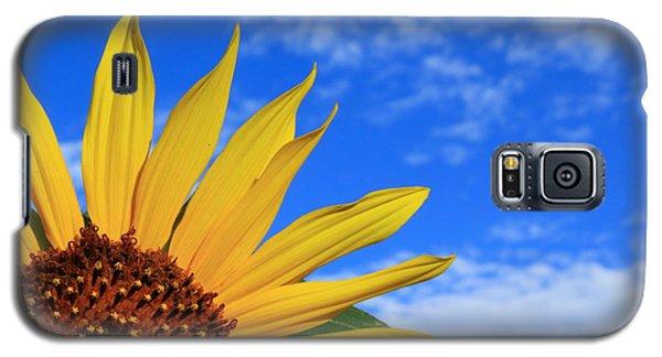 Wild Sunflower Galaxy S5 Case