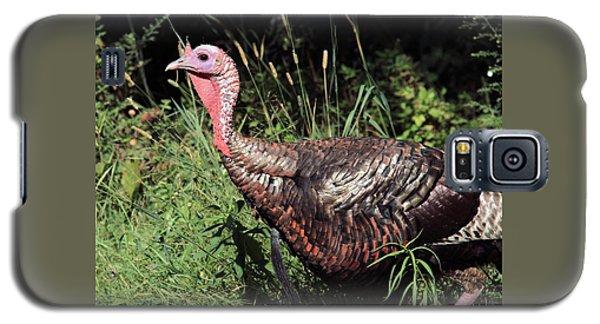 Wild Turkey Galaxy S5 Case by Doris Potter