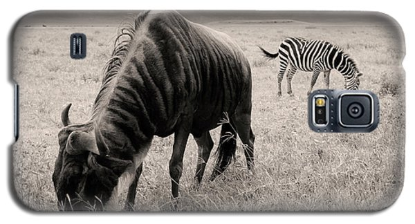 Wildebeest And Zebra Galaxy S5 Case