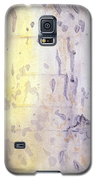 Wilderness Calligraphy - Aspen Tree Galaxy S5 Case