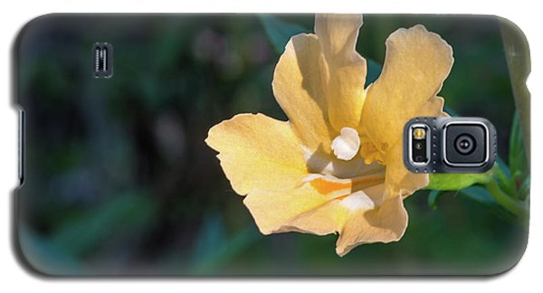 Wilderness Flower 2 Galaxy S5 Case