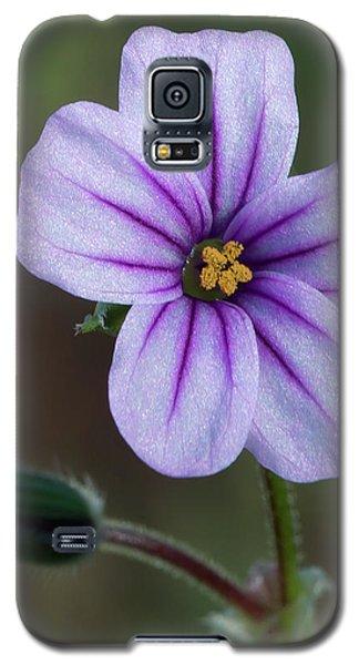 Wilderness Flower 3 Galaxy S5 Case