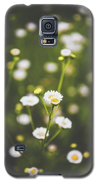 Galaxy S5 Case featuring the photograph Wildflower Beauty by Shelby Young