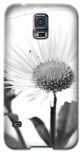 Wildflower In A Wine Glass Black And White Galaxy S5 Case