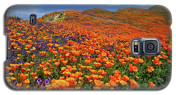 Wildflower Jackpot Galaxy S5 Case